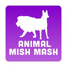 Animal Mish Mash